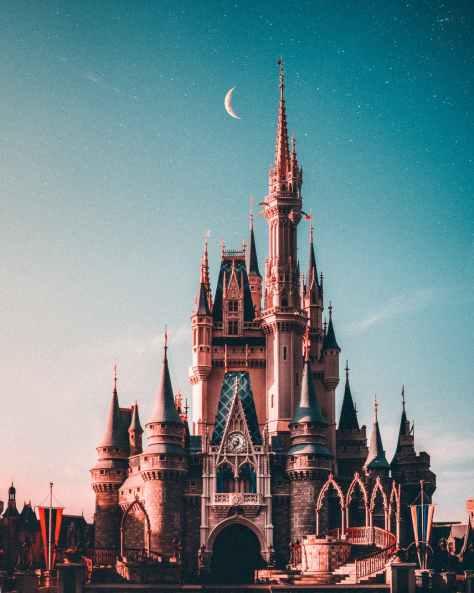 walt disney castle